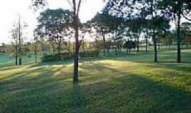 Bastos - Gramado do Campo de Golf-Foto:tetsuo miyakubo