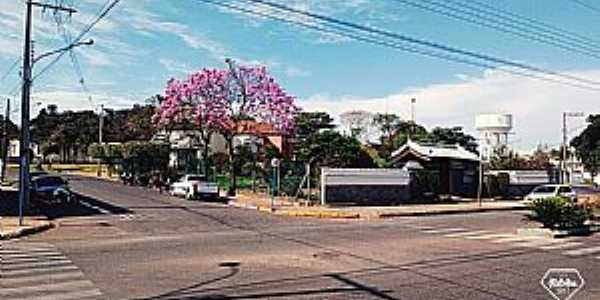 Imagens da cidade de Bastos - SP