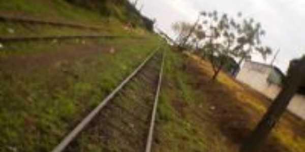 Linha Do Trem , Por Herbert Souza Colombo
