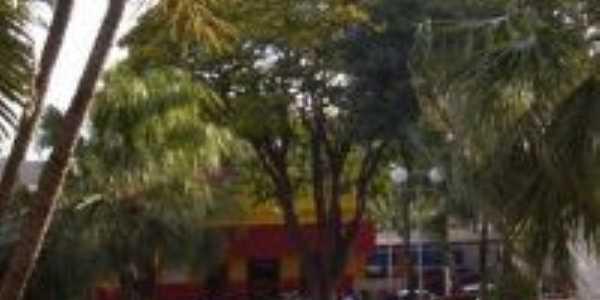 Fonte da Praça de Borborema-SP, Por Paulo Araujo