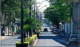 Botucatu - Avenida Santana-Foto:F�bio Barros
