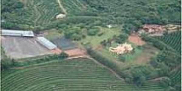 Fazenda em Brejo Alegre