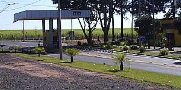 Bueno de Andrada-SP-Ped�gio da Coxinha-Foto:MARCO AUR�LIO ESPARZA