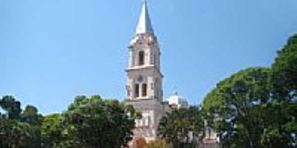 Co-Catedral de Santa Isabel de Portugal-Foto:Vicente A. Queiroz