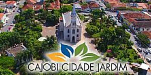 Imagens da cidade de Cajobi - SP