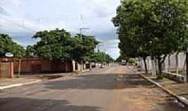 Campinal - Avenida-Foto: L.S.Macedo