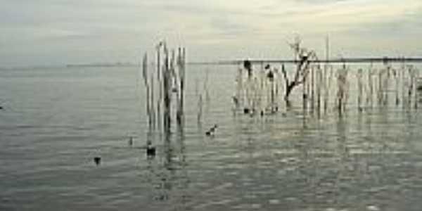 Lago Porto Primavera-Foto:Augusto Muniz