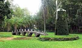 Campinas - Campinas-SP-Moinho e Ponte na antiga Fazenda Bradesco-Foto:Eduardo Dantas