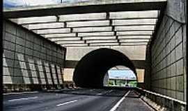 Campinas - Campinas-SP-Túnel na Rodovia Alberto Panzan-Foto:AntonioJVidaL