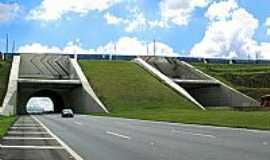 Campinas - Campinas-SP-Túnel sob Ferrovia-Foto:Eduardo Dantas