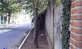 Canas - Canas-SP-Rua M.H.Buzzatto de Oliveira-Foto:Enivaldocruz