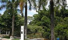 Capivari - Rio Capivari visto da Rua da Barra em Capivari-Foto:Rubens de Souza