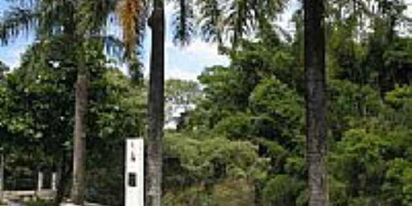 Rio Capivari visto da Rua da Barra em Capivari-Foto:Rubens de Souza