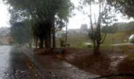 Carapicuíba - Parque Jandaia, Por Antonio Cícero da Silva(Águia)