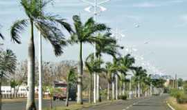 Castilho - Avenida Getulio Vargas, Por Henrique