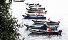 Castilho - Pescadores no torneio de pesca