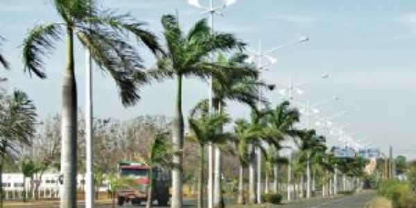 Avenida Getulio Vargas, Por Henrique