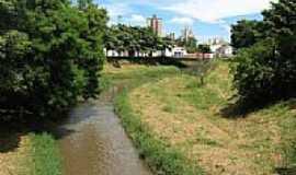 Catanduva - Rio São Domingos foto por André Bonacin
