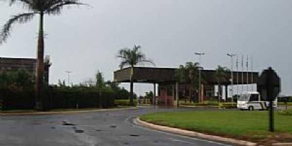 Catanduva-SP-Rodovia Comendador Pedro Monteleone-Foto:Mauro Luiz Benedito