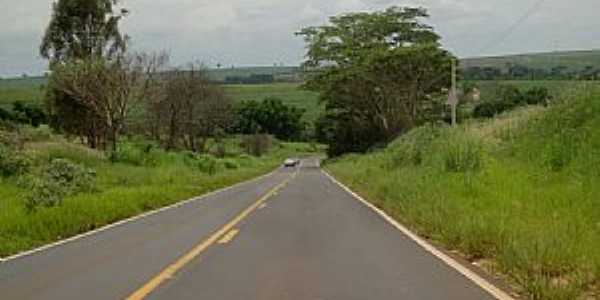 Rodovia vicinal que liga Catigu� a Catanduva - por MARCO AUR�LIO ESPARZA