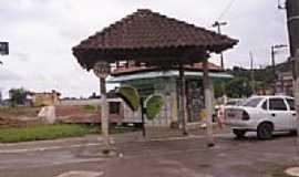 Cipó-Guaçu - Cipó-Guaçu-Foto:danilosilva1610