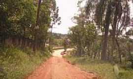Cipó-Guaçu - Rua Arthur F.Luta-Foto:danilosilva1610