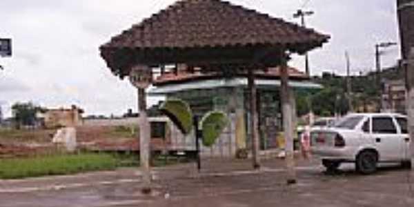 Cipó-Guaçu-Foto:danilosilva1610