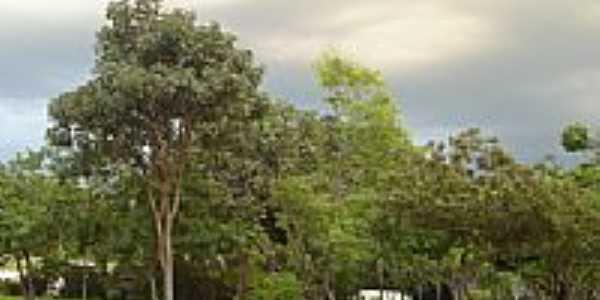 Praça Santa Gertrudes por irineu augusto