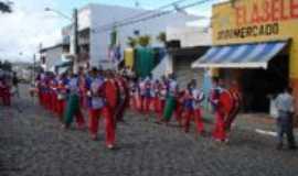 Pau Brasil - fampabra, Por francislan santos