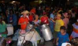 Pau Brasil - leite de onça/pau brasil, Por francislan santos