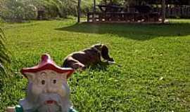 Cotia - Cotia-SP-Rancho dos Gnomos-Foto:ranchodosgnomos