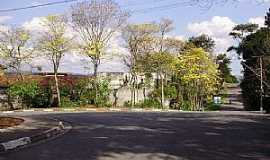 Cotia - Cotia-SP-Ruas floridas no Jardim Ipê-Foto:Roberto Quirino Simões
