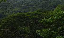 Cubatão - Válvula da Usina Henry Borden-Foto:Marcelo Parise Petaz…