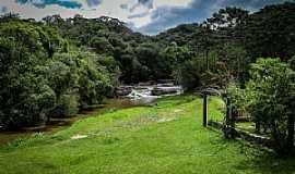 Cunha - Parque Estadual da Serra do Mar