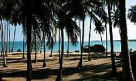 Japaratinga - Praia de Bitingui por m.graca