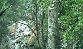 Eldorado - Paisagem - Caverna do Diabo