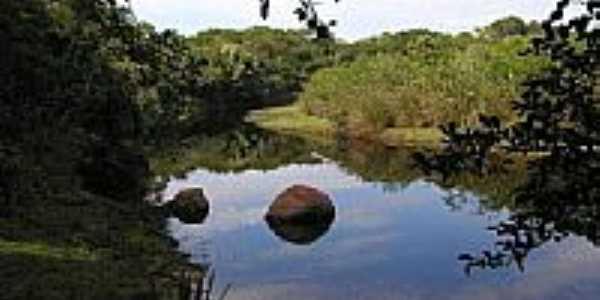 Rio Cubatão em Elisiário por Camarguinho