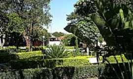 Emilianópolis - Jardim da Praça Benedita Domingues Martins.