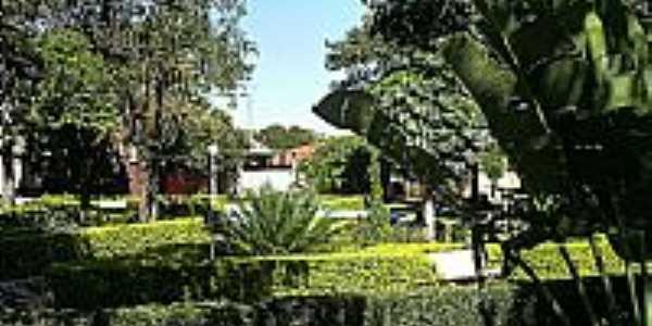 Jardim da Praça Benedita Domingues Martins.