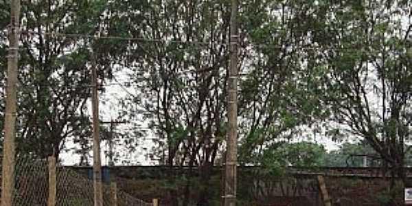 Passagem, Bairro Vila Toninho Para Distrito Engenheiro Schmidt