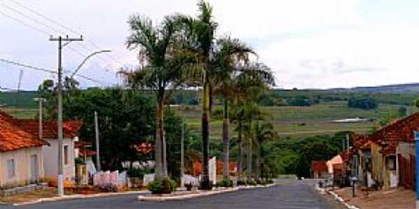 Fernão-SP-Avenida Principal-Foto:Luciano Rizzieri
