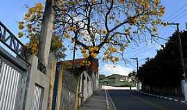 Ferraz de Vasconcelos - Ferraz de Vasconcelos-SP-Rua Clóvis Bevilácqua-Foto:Vitor J. Quarelo