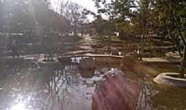 Gar�a - Jardim Oriental Lago de Gar�a por Fernando Afonso