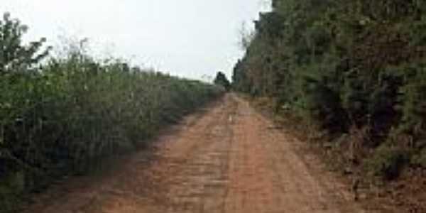 Estrada passando por Guaianas-SP-Foto:pereira bike