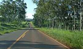 Guarapuá - Estrada-Foto:Minduim