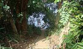 Guatapará - Acesso ao Rio-Foto:beto1000