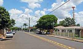 Hercul�ndia - Avenida-Foto:Eduardo M. P. Dantas