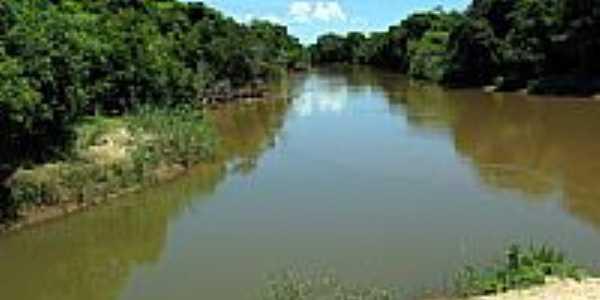 Rio Feio (aguape�)foto por Eduardo M. P. Dantas