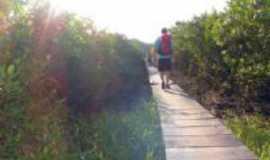 Iguape - Ponte da Alegria-Barra, Por Zeli Curcio
