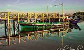 Ilha Diana - Ilha Diana-SP-Passarela de embarque-Foto:Nilo Piccoli